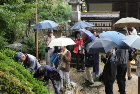 寺名の由来となった「天皇を救った湧水」を味わいました。(撮影:津田睦美研究員)
