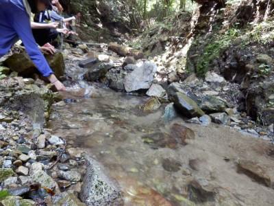 仰木の水源で涼をとる学生たち