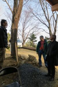 山桜の木はこのまま活かしたいなぁと大岩先生