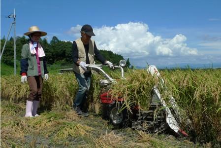 助っ人登場。一条用バインダー。仰木には約40年前に導入された。稲刈りをし、束ねる機械。