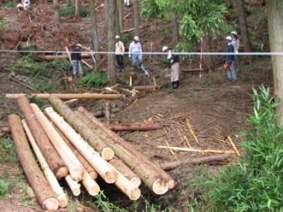 伐採した間伐材を機械を使って切り出しました