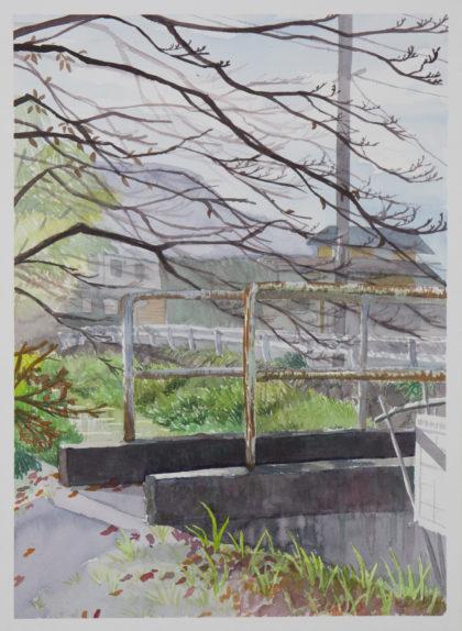 石田 夏穂「澄んだ空気」