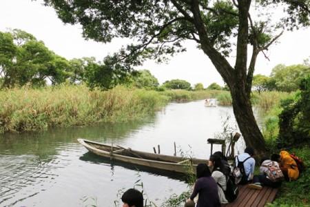針江川河口では、もんどりなどでのその日のおかずになる魚とり「おかずとり」が行われています。