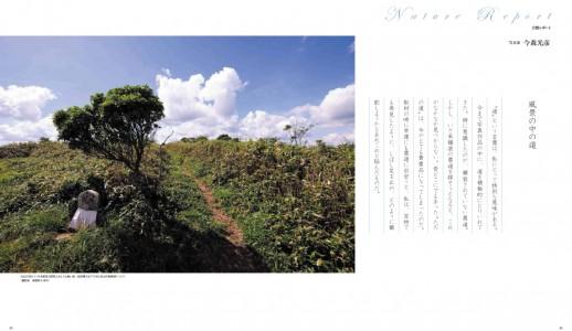 「風景の中の道」写真・文:今森光彦