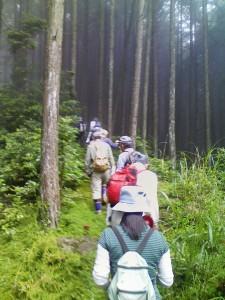 仰木と隣接する大原の森の境界線を歩き、森の状態を確認していく【踏査】