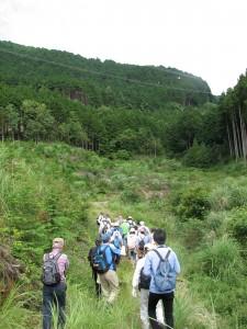 道なき道を森林に向かって歩く