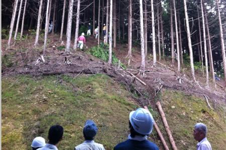 山行に同行し、間伐材を切り出す作業を行う【間伐伐採】