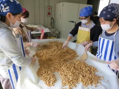 3月3日仰木の方に手作り味噌づくりを教わり、取材しました