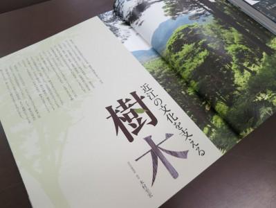 「近江の文化を支える樹木」 著:木村至宏 写真:寿福滋