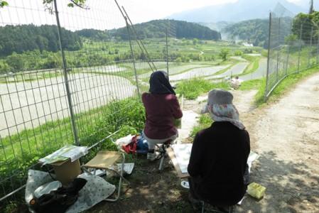 棚田の縁にはイノシシやシカからお米を防護するため柵がはりめぐされている。